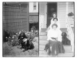 Dog with ribbon ; three women on...
