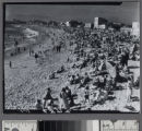 Crowds of people at Venice Beach,...