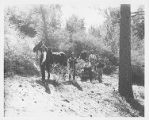 Six men and a horse, Mount Wilson.