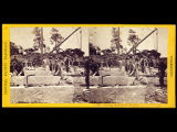 Recto of stereo card #233.