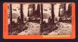 Recto of stereo card #132. ...