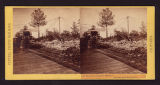 Recto of stereo card #140. ...