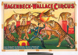 Hagenbeck-Wallace Circus : Capt. Robert McPhearson and his group of forest-bred, trained, royal...