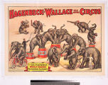 Hagenbeck-Wallace Wild Animal Circus : the Carl Hagenbeck world-famous performing elephants.
