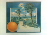 Stock label: woman riding horse past orange trees, palms and a well.