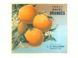 Fancy Navel Oranges.