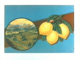 Stock label: lemons and leaves with landscape of orchards and mountains.