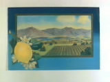 Stock label: lemon on branch with framed landscape of lemon groves and mountains.