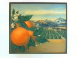 Stock label: oranges, leaves and blossoms with orchards, lake and mountains.