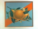 Stock label: oranges and blossoms on branch with red sash.