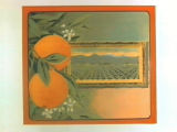 Stock label: oranges with framed picture of orchard and mountains.